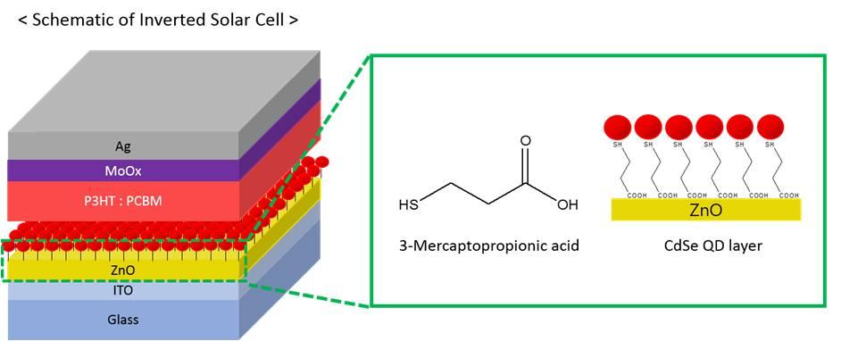 Publication Organic Nanomaterials Lab